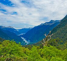 Doubtful Sound from Wilmot Pass by Neil