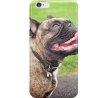 Cute French bulldog puppy, dog looking up 2 iPhone Case/Skin