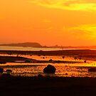 Midnight Summer Dream Norway. Doctor Andrzej Goszcz. by © Andrzej Goszcz,M.D. Ph.D