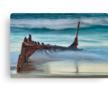 Shipwreck Canvas Print