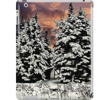 SNOW ON THE PINES iPad Case/Skin