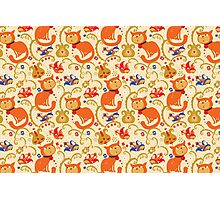 RED cat BLUE bird pattern. Photographic Print