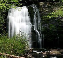 Meigs Falls by Gary L   Suddath