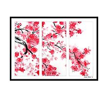 Cherry Blossom Tryptich Photographic Print