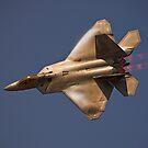 F-22 Raptor by Andy Mueller