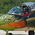 Dragon Nose Art by Andy Mueller