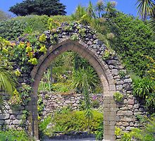 Abbey Gardens, Tresco by snurfdood