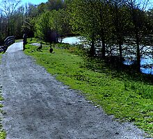 Country Lanes by AnneRN