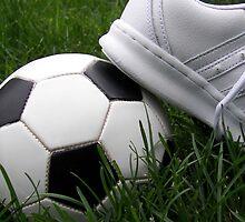 Soccer Season by Maria Dryfhout