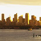 Sunset on Sydney by Jared Poole