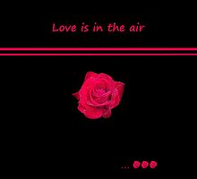 Rose Radtko - Love is in the air (I) by Evelyn Laeschke