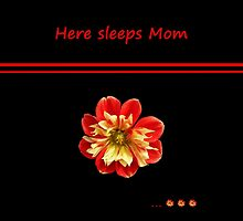 Dahlia red-yellow - Here sleeps Mom by Evelyn Laeschke