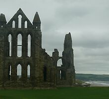 whitby abbey 2 by Wrigglefish