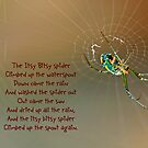 Itsy Bitsy Spider by Bonnie T.  Barry