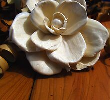 Essence of Vanilla by Suni Pruett