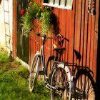 Country life by Annika Strömgren