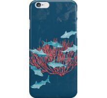 marittimo iPhone Case/Skin
