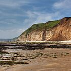 South Landing Flamborough by spemj