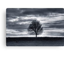 Landscape with tree silhouette Canvas Print