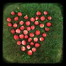 Snow Apple Love - Fine Art Viewfinder Photograph by HighlandGhillie