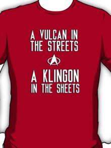 A vulcan in the streets a klingon in the sheets T-Shirt