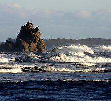 Australia Rock, Arthur River, West Coast of Tasmania by Christine Beswick