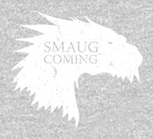 Smaug is coming Kids Clothes