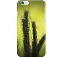 La Luz iPhone Case/Skin