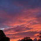 Sunset, 7:18pm by Judy Clark