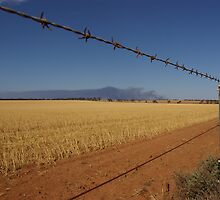 Distant bushfire smoke, The Riverland, SA by pmitchell