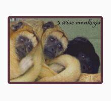 3 wise monkeys by Tanya Housham