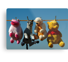 HANG 'EM HIGH (Not much Hunny up here!) Metal Print