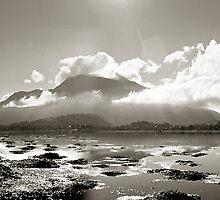 Seaweed and Cloud by hughlong