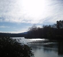 Price Lake, North Carolina by Johanna  Rutter