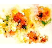 Summer Dreaming.... Photographic Print