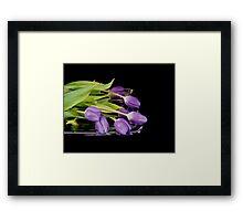 Purple on Silver Framed Print