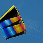 Large colourful kite by Martyn Franklin