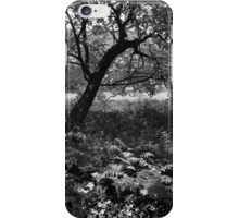 Full summer verdant green, with black veins (ii) - photography iPhone Case/Skin