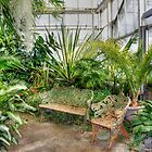 Come Sit With Me - Ott's Greenhouse Waterfall Room by MotherNature2