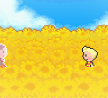 Sunflower Fields - Mother 3 Sticker