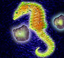 Galapagos Island Evolution by indiebuddy