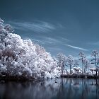 Infrared 06 by Nick Alpin