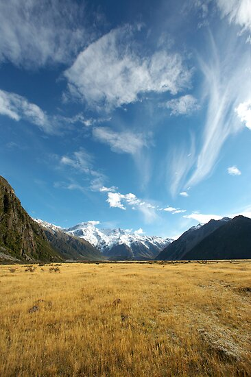 New Zealand Vista by Stephanie Johnson