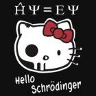 Hello Schrodinger by Iva Ivanova