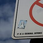 It is a criminal offence...3 by Danielle  La Valle