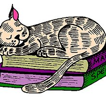 Cat Sleeping On Books by kwg2200
