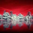 Weeroona Reflection (IR) by GS-Imagery