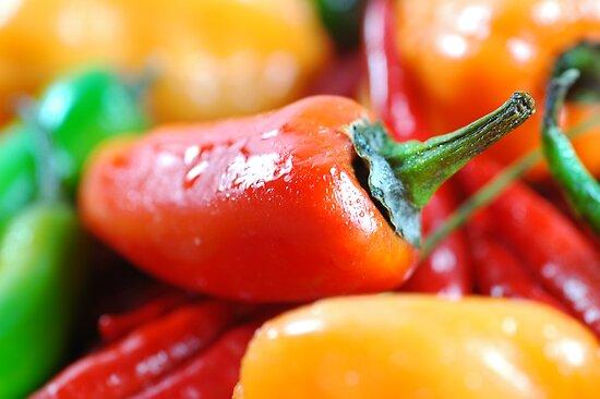 Hot Peppers by Karin  Hildebrand Lau
