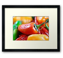 Hot Peppers Framed Print