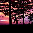 Pondering Under a Pink Sky by Josh Meggs